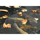 Hozelock 6m x 4m Pond Cover Net